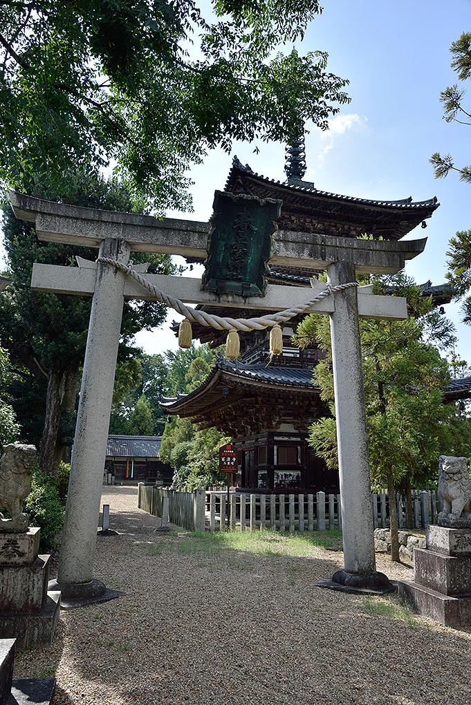 春日若宮神社