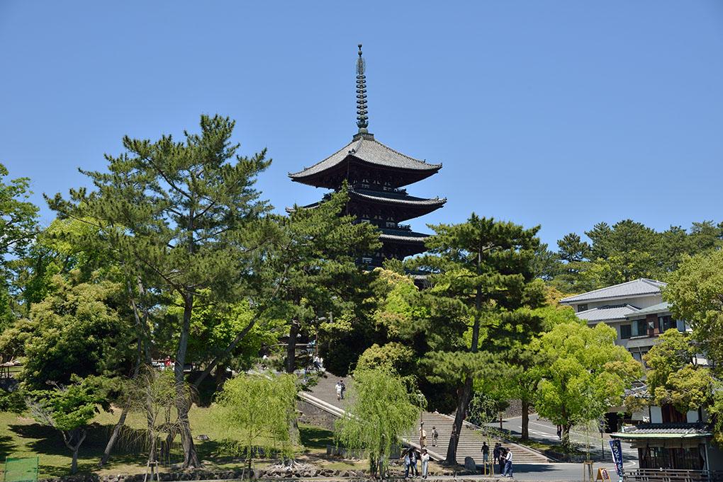 猿沢池から望む興福寺五重塔