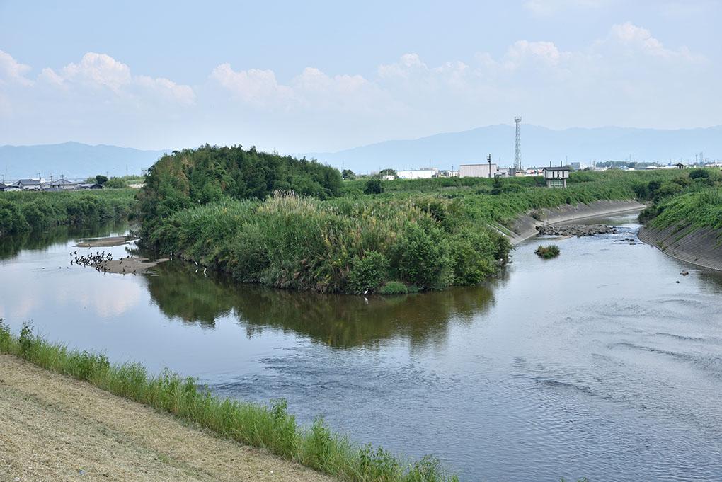 大和川と曽我川の合流点