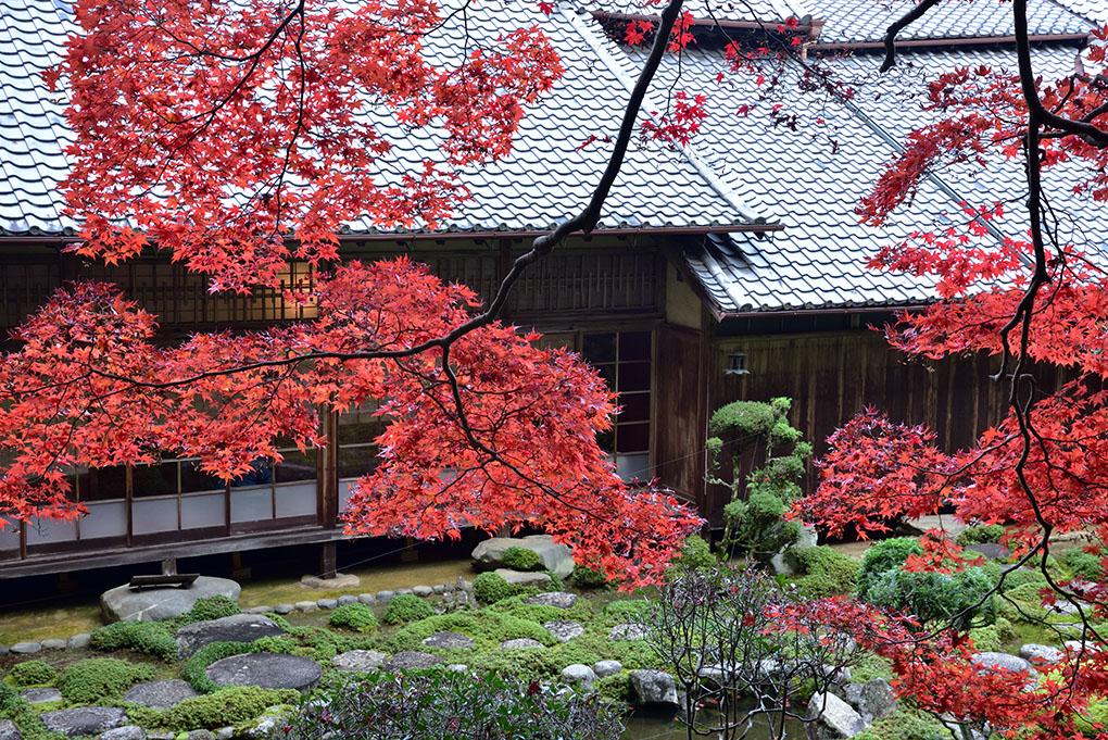 當麻寺西南院の紅葉