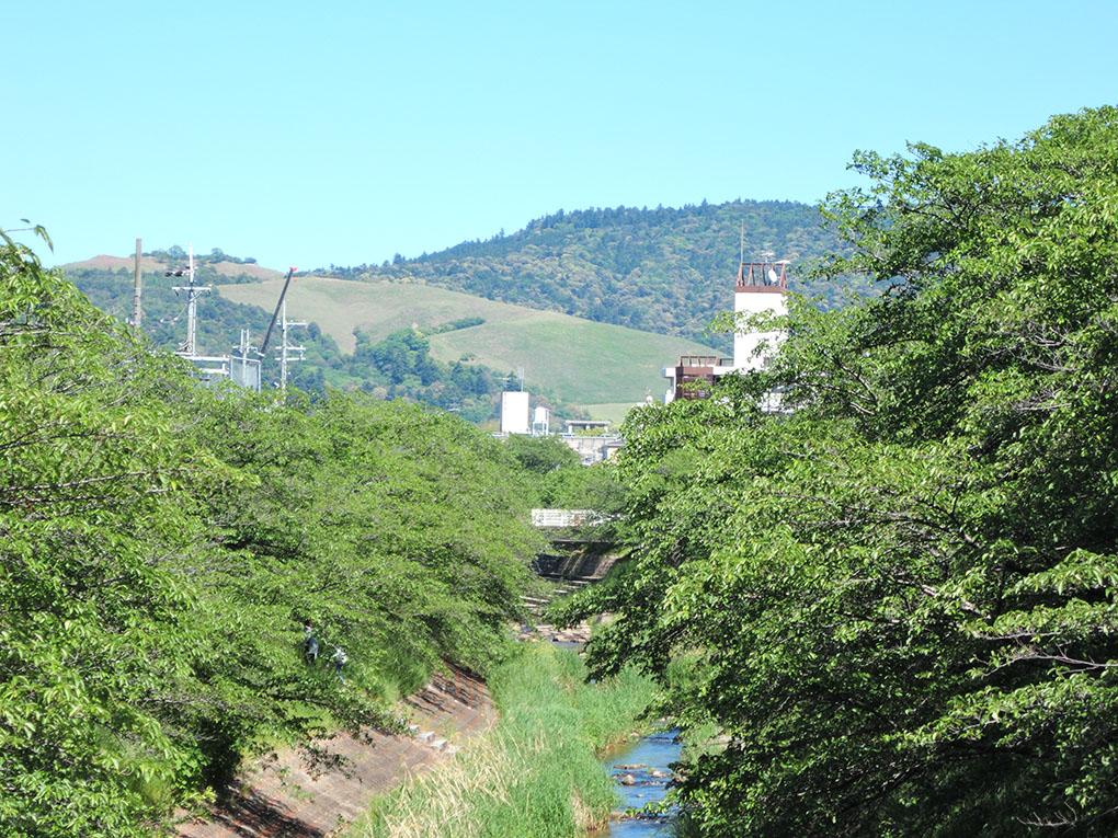 佐保川と若草山