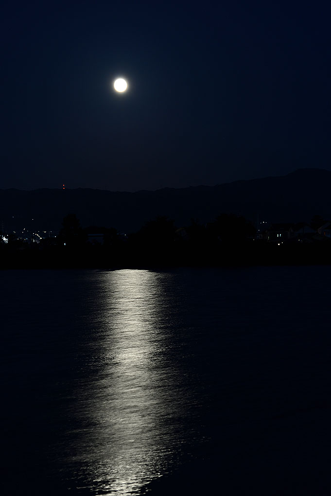 勝間田池を照らす月
